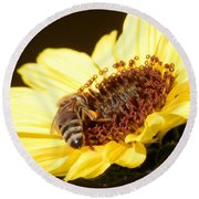 Black And Yellow Bee Beauty Round Beach Towel by Belinda Lee