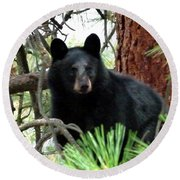 Black Bear 1 Round Beach Towel