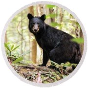 Black Bear Smile Round Beach Towel by Debbie Green