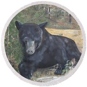 Black Bear - Wildlife Art -scruffy Round Beach Towel