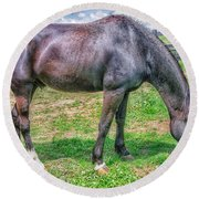 Round Beach Towel featuring the photograph Black Beauty by Dennis Baswell