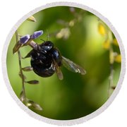 Black Bumblebee Round Beach Towel by Debra Martz