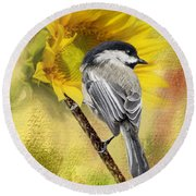 Black Capped Chickadee Checking Out The Sunflowers Round Beach Towel