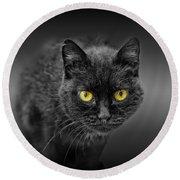 Black Cat Round Beach Towel by Peter Lakomy