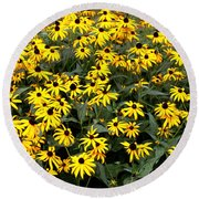 Black Eyed Susans Round Beach Towel by Lena Auxier