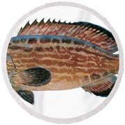 Black Grouper Round Beach Towel
