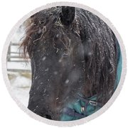 Black Horse In Snow Round Beach Towel