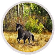 Black Stallion Runs Free Round Beach Towel