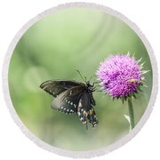 Black Swallowtail Dreaming Round Beach Towel by Debbie Green