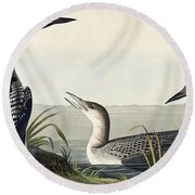 Black Throated Diver  Round Beach Towel by John James Audubon
