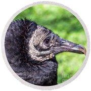 Black Vulture Waiting For Prey Round Beach Towel