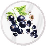 Round Beach Towel featuring the painting Blackcurrant Berries  by Irina Sztukowski