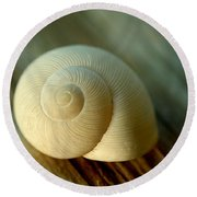 Round Beach Towel featuring the photograph Bleached by Greg Allore