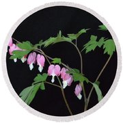 Round Beach Towel featuring the photograph Bleeding Hearts 2 by Jeannie Rhode
