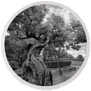 Blessed Tree Of Horyuji Temple - Japan Round Beach Towel