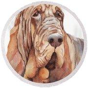 Bloodhound Round Beach Towel