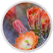 Round Beach Towel featuring the photograph Bloom In Orange by Bryan Keil