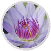 Blooming For You Round Beach Towel by Chrisann Ellis