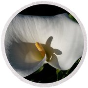 Round Beach Towel featuring the photograph Blooming Lily Of San Francisco by Emmy Marie Vickers