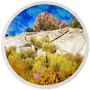 Round Beach Towel featuring the photograph Blooming Nevada Desert Near Ely by Gunter Nezhoda