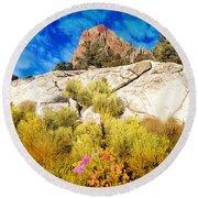 Blooming Nevada Desert Near Ely Round Beach Towel
