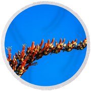 Blooming Ocotillo Round Beach Towel