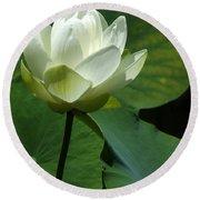 Blooming White Lotus Round Beach Towel