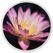 Blooming With Beauty Round Beach Towel by Chrisann Ellis