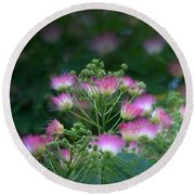 Blooms Of The Mimosa Tree Round Beach Towel by Jeanette C Landstrom