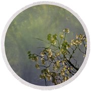 Round Beach Towel featuring the photograph Blossom Reflection by Marilyn Wilson