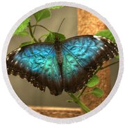 Blue And Black Butterfly Round Beach Towel