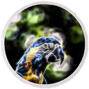 Blue And Gold Macaw V4 Round Beach Towel by Douglas Barnard