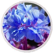Round Beach Towel featuring the photograph Blue And Purple Flowers by Matt Harang