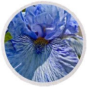 Blue Bearded Iris Round Beach Towel