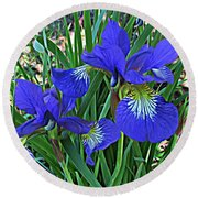 Blue Beauty Round Beach Towel by Janice Westerberg