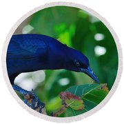 Blue-black Black Bird Round Beach Towel by Susan Molnar