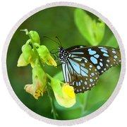 Blue Butterfly In The Green Garden Round Beach Towel