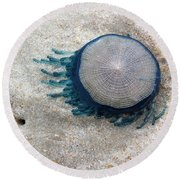Blue Button #2 Round Beach Towel