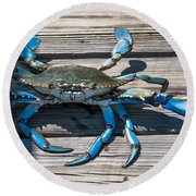 Blue Crab Pincher Round Beach Towel