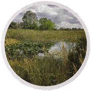 Blue Cypress Wetlands Round Beach Towel by Fran Gallogly