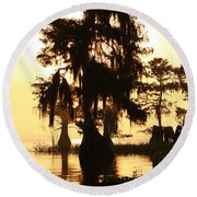 Round Beach Towel featuring the photograph Blue Cypress Yellow Light by Paul Rebmann