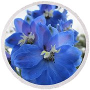Blue Delphinium Rising Round Beach Towel by MTBobbins Photography