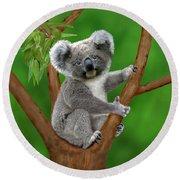 Blue-eyed Baby Koala Round Beach Towel