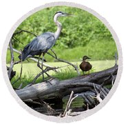 Blue Heron And Friend Round Beach Towel