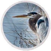 Blue Heron At Pond Round Beach Towel