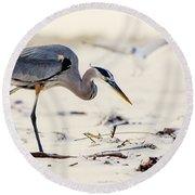 Blue Heron At The Beach Round Beach Towel
