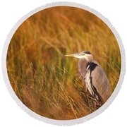 Round Beach Towel featuring the photograph Blue Heron In Louisiana Marsh by Luana K Perez