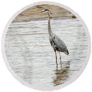 Round Beach Towel featuring the photograph Blue Heron by Michael Chatt