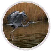 Round Beach Towel featuring the photograph Blue Heron Takes Flight by William Selander