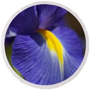 Blue Iris With Yellow Round Beach Towel
